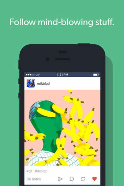Tumblr for iOS image
