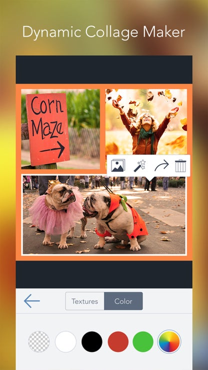 BeFunky - Photo Editor & Collage Maker for iOS image