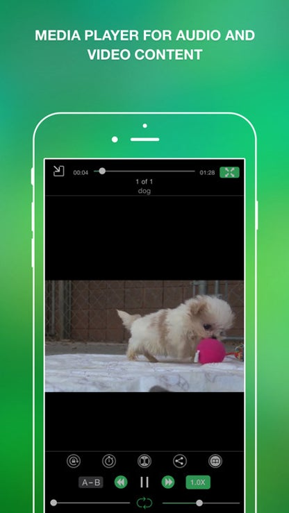 iFile Organizer for iOS image