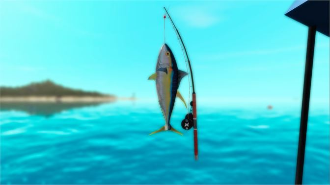 Sail your boat and go big-game fishing around San Marcos