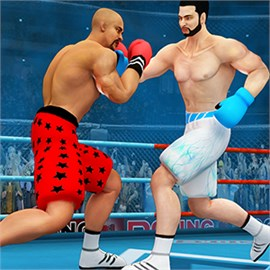 Shadow Fight Boxing Free
